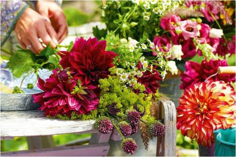 10 самых красивых цветущих растений для сада