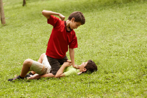 Почему дерутся дети, или как справиться с детской агрессией