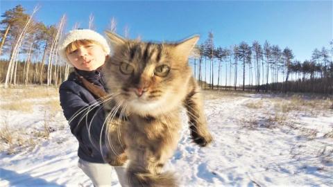 Видео с животными в поддержку хорошего настроения