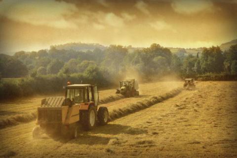 «Сельскохозяйственная сверхд…