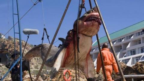 В Пакистане поймана 15-тонна…