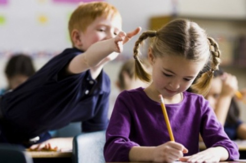 В ЛНР откроют классы с разде…