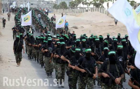 Как армии Израиля и США защищают террористов в Сирии