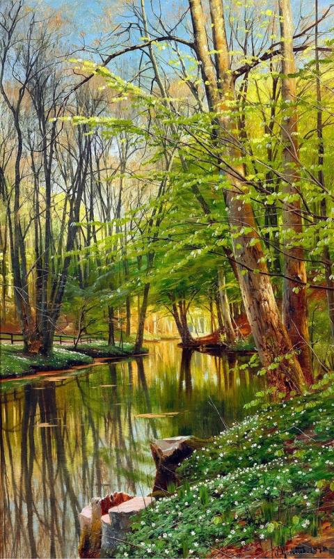Невероятной красоты пейзажи Петер Мёрк Мёнстед