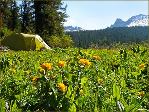 палатка в жарках