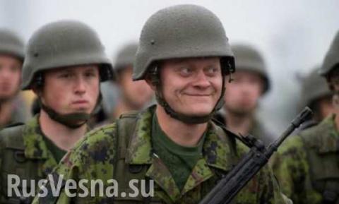НАТО не готово дать отпор в …