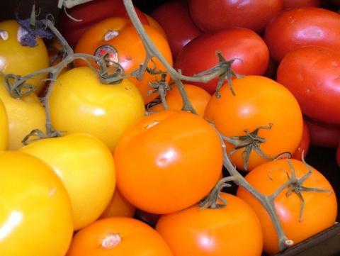 Мои любимые желтые томаты - описание сортов