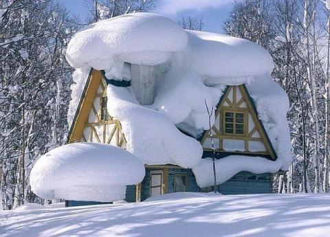 У леса на опушке жила зима в избушке)