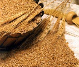 Пшеничные отруби для ухода за кожей