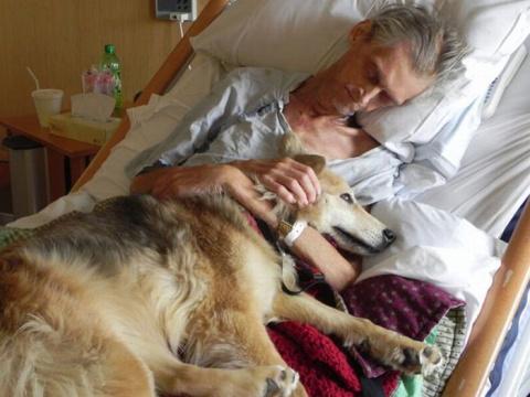 Любовь к бездомной собаке по…