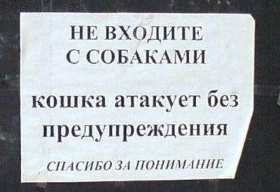 http://mtdata.ru/u18/photo67FB/20833938932-0/big.jpeg