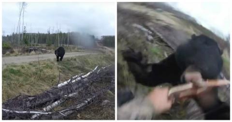 Охотник чудом остался жив после нападения медведя