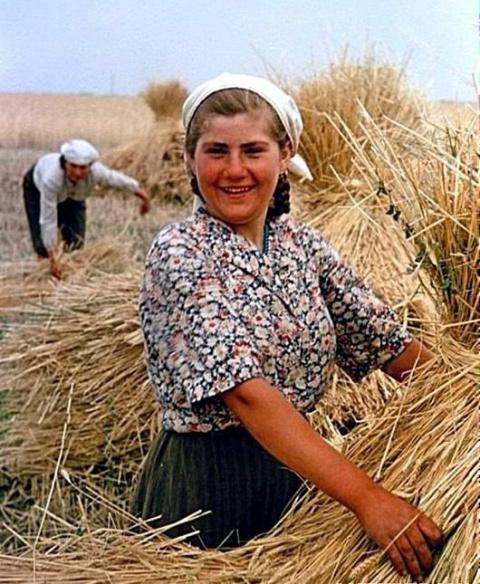 СССР 1950-х в цвете