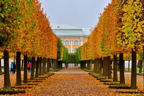 Петергоф. Осень верхнего парка