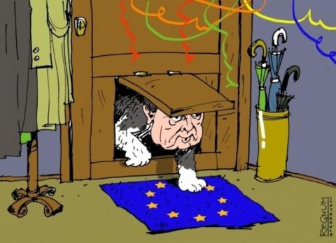 «Европа даже не представляла себе уровень деградации Украины!..»