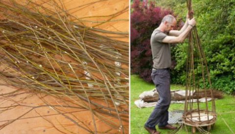 Сосед нарезал палочки вербы …