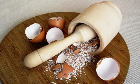 Удобрение из яичной скорлупы: с запахом, зато ух какое полезное!