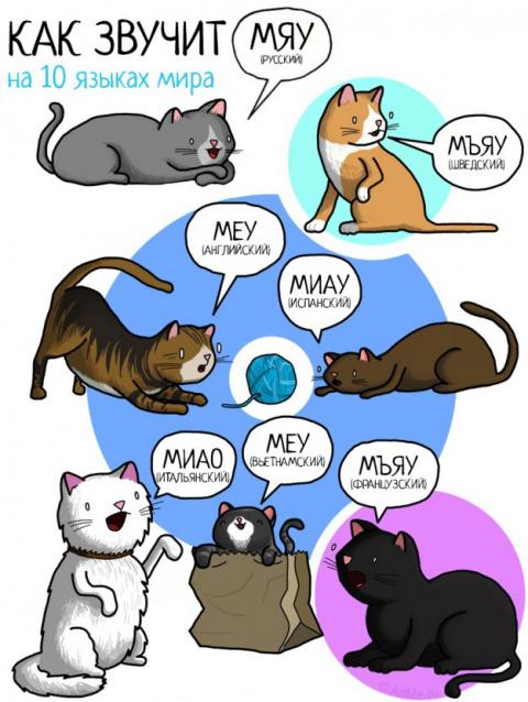 ДЕТКАМ НА ЗАМЕТКУ. Язык животных в разных странах