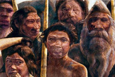 Расшифрован геном человека, жившего 400 тысяч лет назад