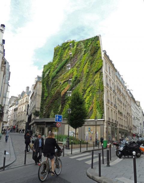 5 вертикальных садов, которые заставят вас обернуться