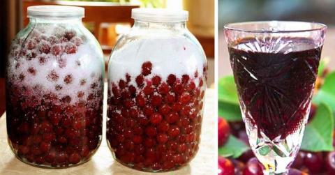 Для души и тела: готовим домашний вишневый ликер и забываем про лекарства
