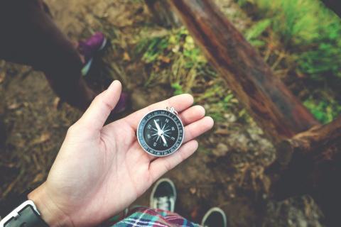 Памятка для заблудившихся в лесу
