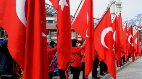 Баклажаны и гранаты из Турции приедут в Россию 30 октября — Ткачев