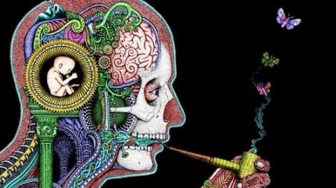 Интернет — это реальный наркотик для мозга