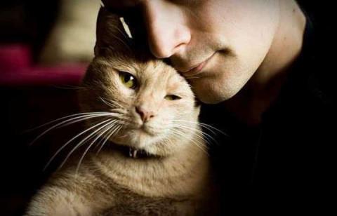 Именно от кошки зависит ваше…