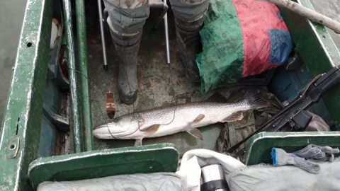 Не рыбалка - мечта! Ловля щуки в краях, где природу не губили