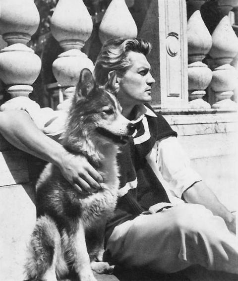 Его любили женщины, а он любил собак