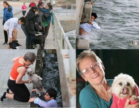 Благородное спасение собаки