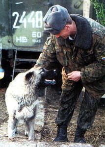 Кавказский маятник — 2000