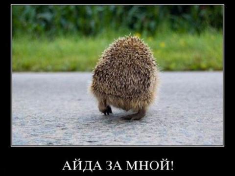 Nats Блиндажёв