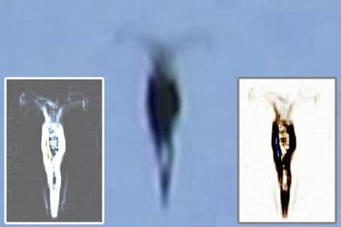 """""""Охотник за НЛО"""" из Теннесси заснял в небе очень странный объект"""