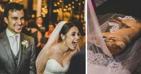 Когда на свадьбу заявился не…