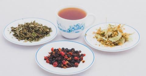 Чайные травы и листья деревьев