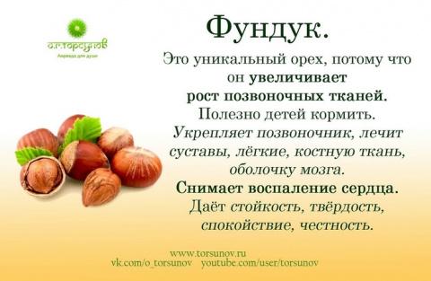 Орехи, ягоды и не только - чем полезны.