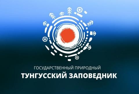 Тунгусский метеорит стал логотипом
