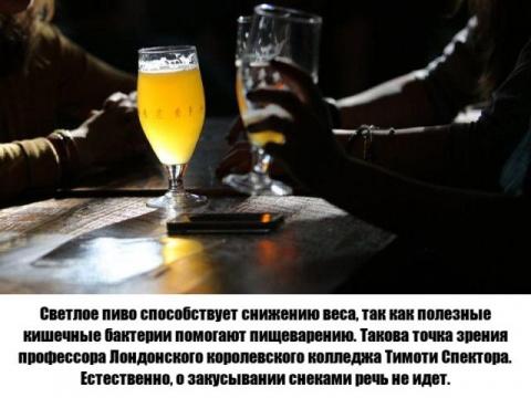 Чем полезно пиво (8 фото)