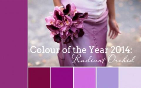 Цвет 2014 года- Сияющая Орхидея
