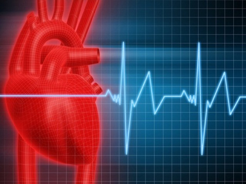 Простые правила укрепляют сердце человека