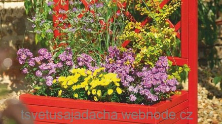 Цветущий уголок в саду