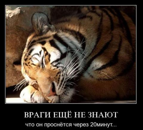 Улыбнитесь! Демотиваторы к празднику 23 февраля)))