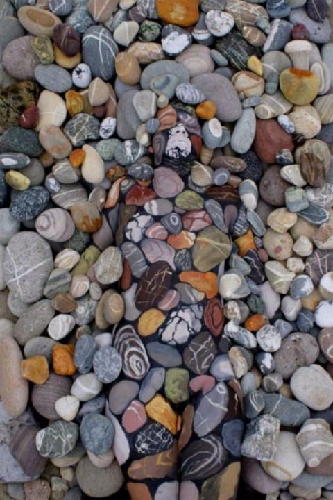 Среди камней и листвы отдыха…