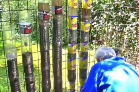У Сергея было 5 соток земли и большое количество пластиковых бутылок… Увидев его огород, соседи ахнули!