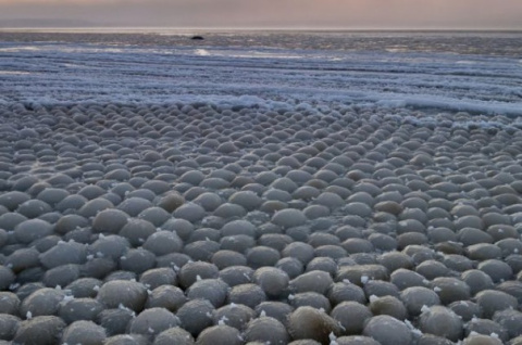 На Финском заливе появилось чудо природы