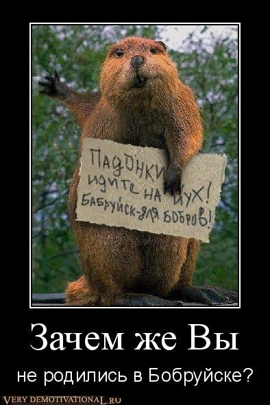 Демотиваторы по коротким фразам (авторские)!