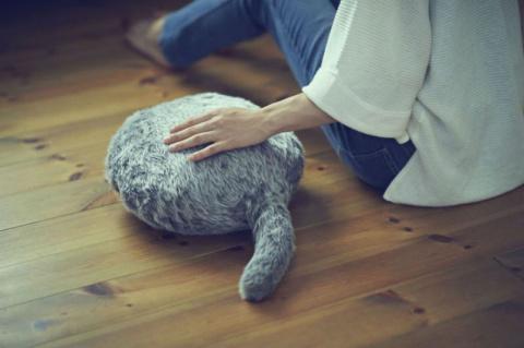 В Японии изобрели робота, заменяющего кота