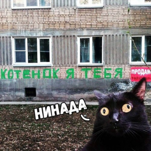 Анекдоты-коротыши (9 шт)